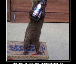 Drinking with your Otter