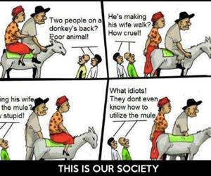 our society in a nutshell funny picture
