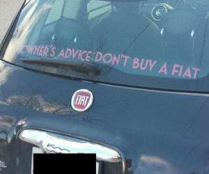 owners advice funny picture