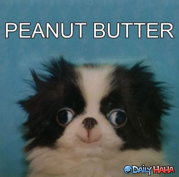 Peanut Butter funny picture