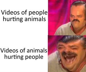 people hurting animals