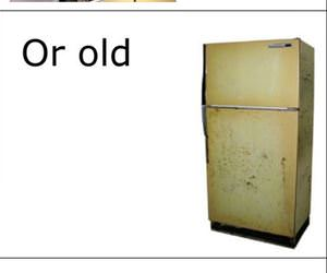 people are like a fridge funny picture