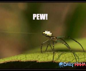 Pew Pew funny picture