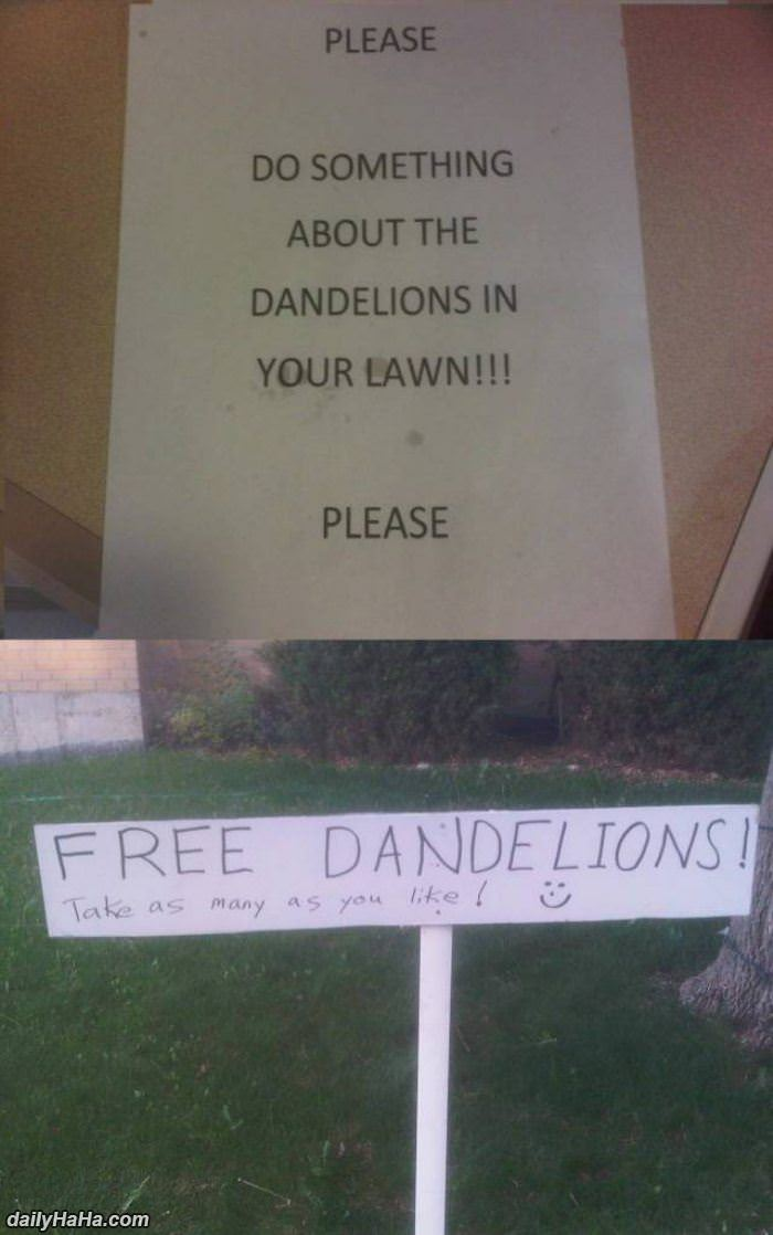 please do something about dandelions funny picture