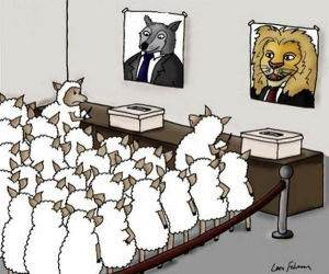 Animal Politics funny picture