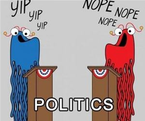 politics in a nutshell funny picture