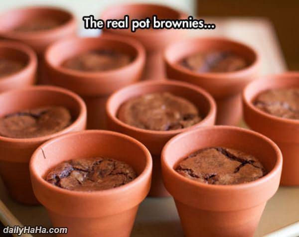 pot_brownies.jpg