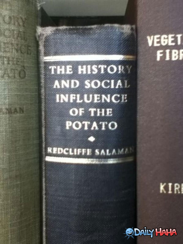 Potato funny picture