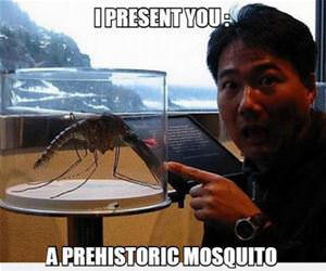 prehistoric mosquito funny picture
