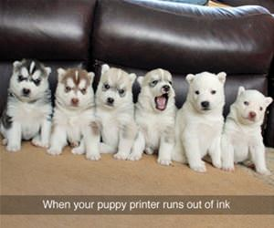 printer runs out of ink funny picture