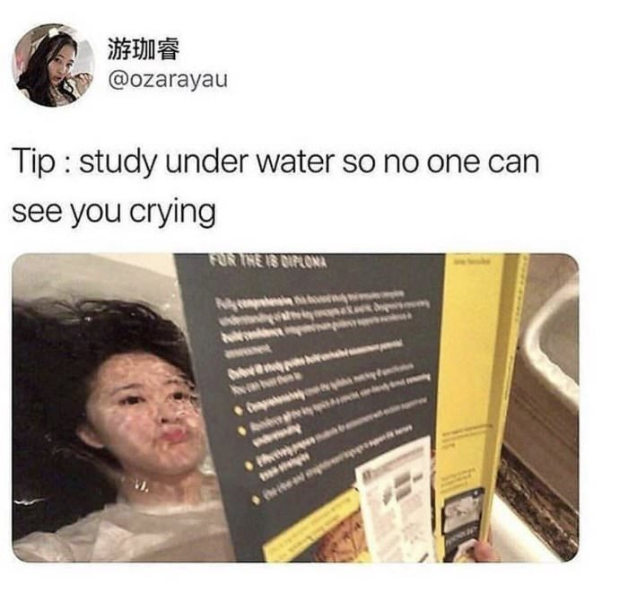 pro tip for studying