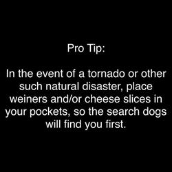 pro tip for you