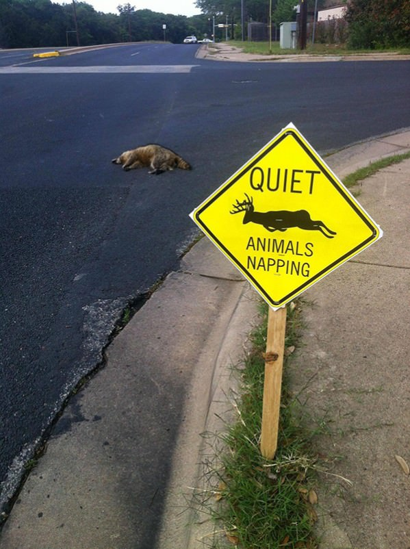 Funny road signs memes