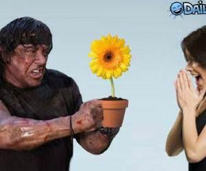 Rambo Gift Flower