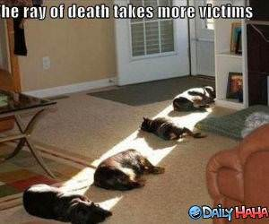 Ray of Death funny picture