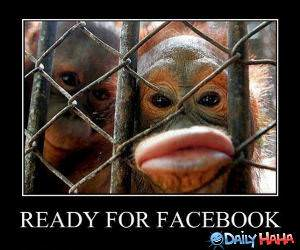 Facebook Ready funny picture