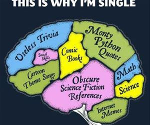 reasons i am single funny picture