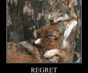 Regrets funny picture