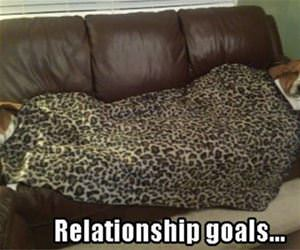 relationship goals funny picture