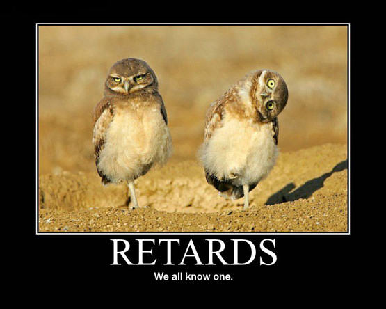 http://www.dailyhaha.com/_pics/retards_we_all_know_one.jpg