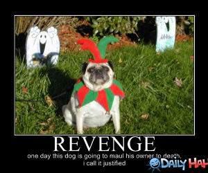 Revenge funny picture