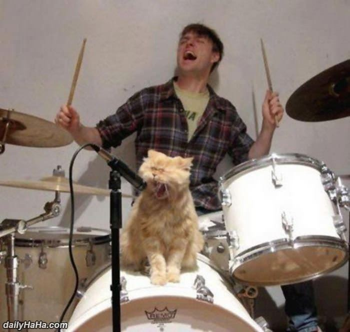 rock out funny picture