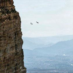 rode my bike off a cliff