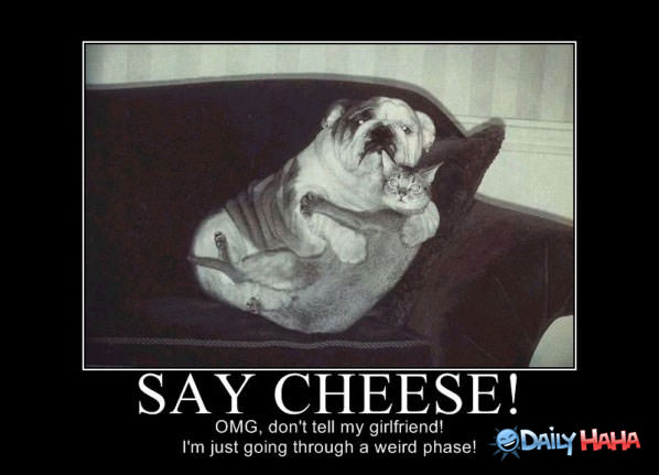 Say Cheese funny picture
