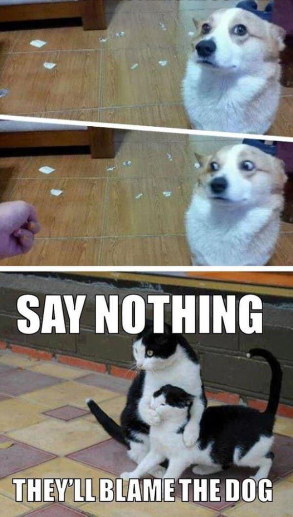 say_nothing.jpg