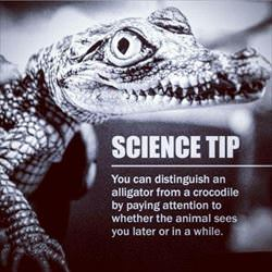 science tip ... 2
