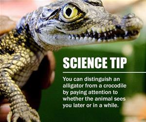 science tip funny picture