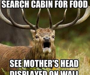 Search Cabin funny picture