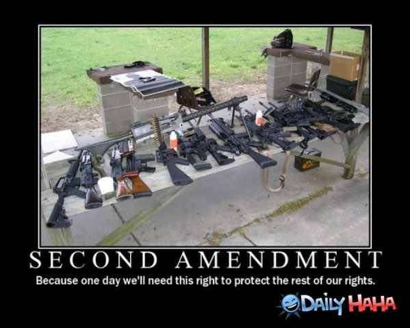 Second Amendment funny picture