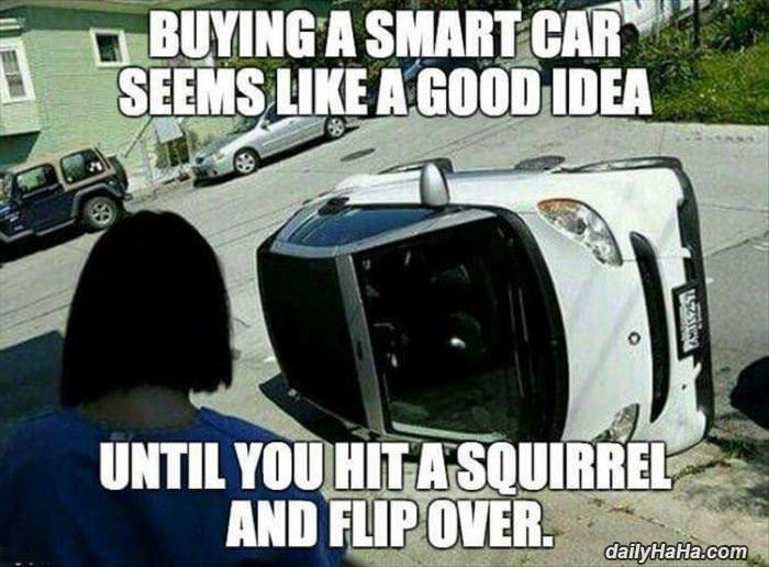 Ing A Smart Car Seems Like Good Idea Until You Hist Squirrel And Flip Over