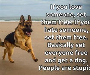 set them free funny picture