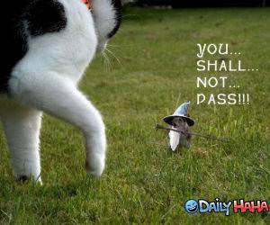 Shall Not Pass funny picture