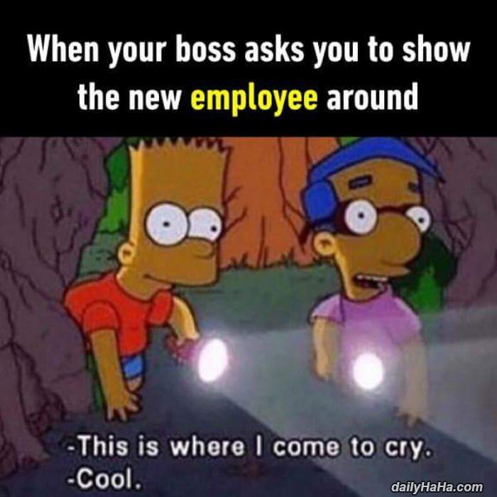 show the new employees around funny picture