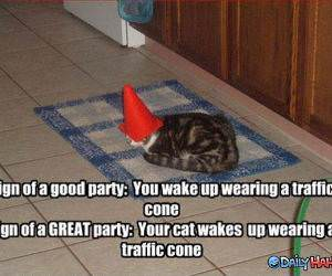 Awesome Party funny picture