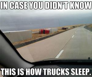 sleeping trucks funny picture