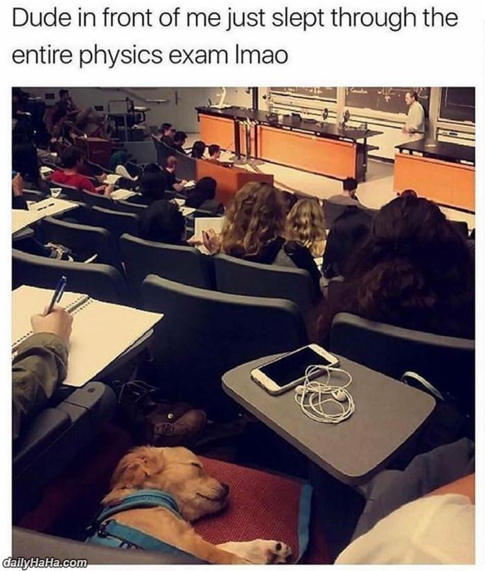 slept through the entire exam funny picture