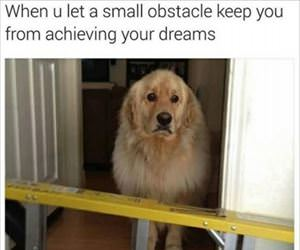 small obstacles are a problem