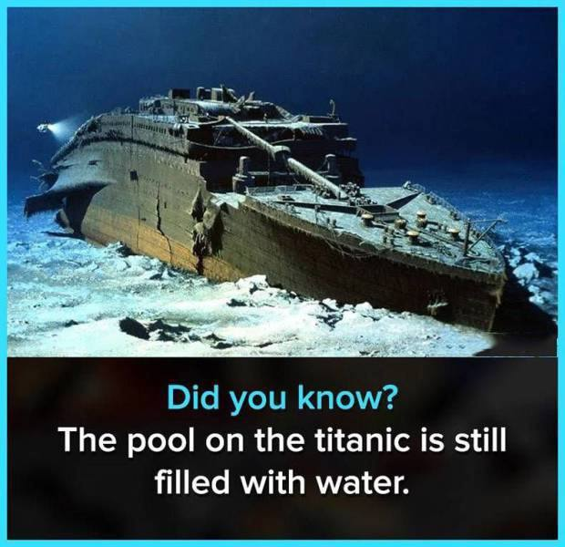 a cool fact