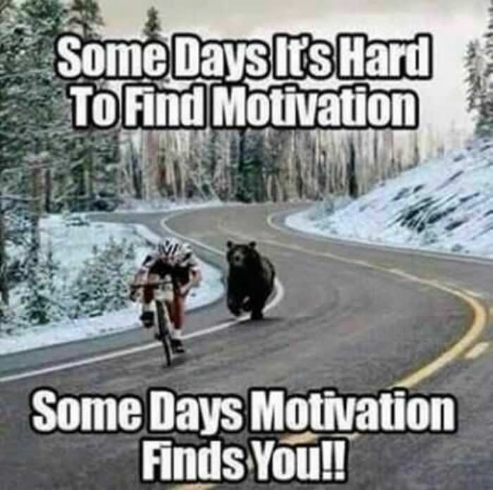 some days its hard to find motivation