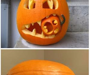 some fun pumpkins part 2 funny picture