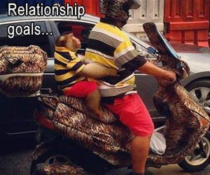 some relationship goals funny picture