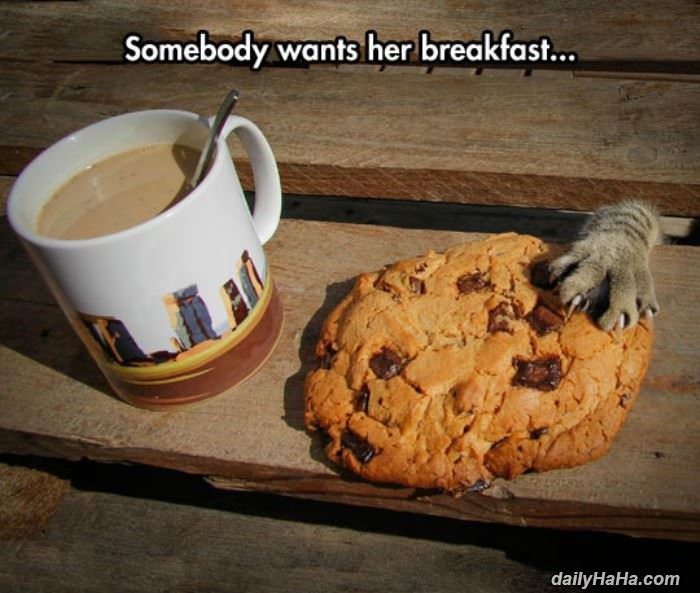 someone wants her breakfast funny picture