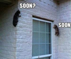 Very Soon funny picture