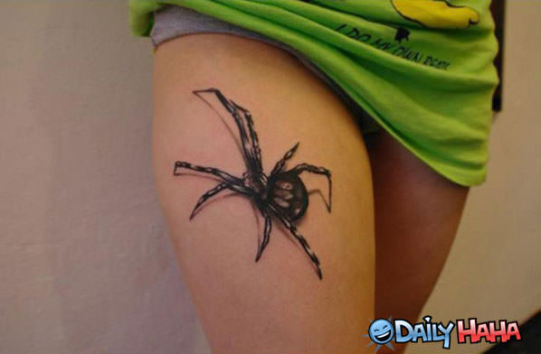Spider Tattoo funny picture