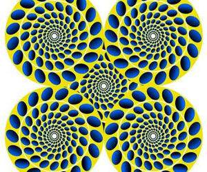 Spinning Circles Illusion