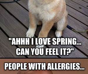 spring is here funny picture